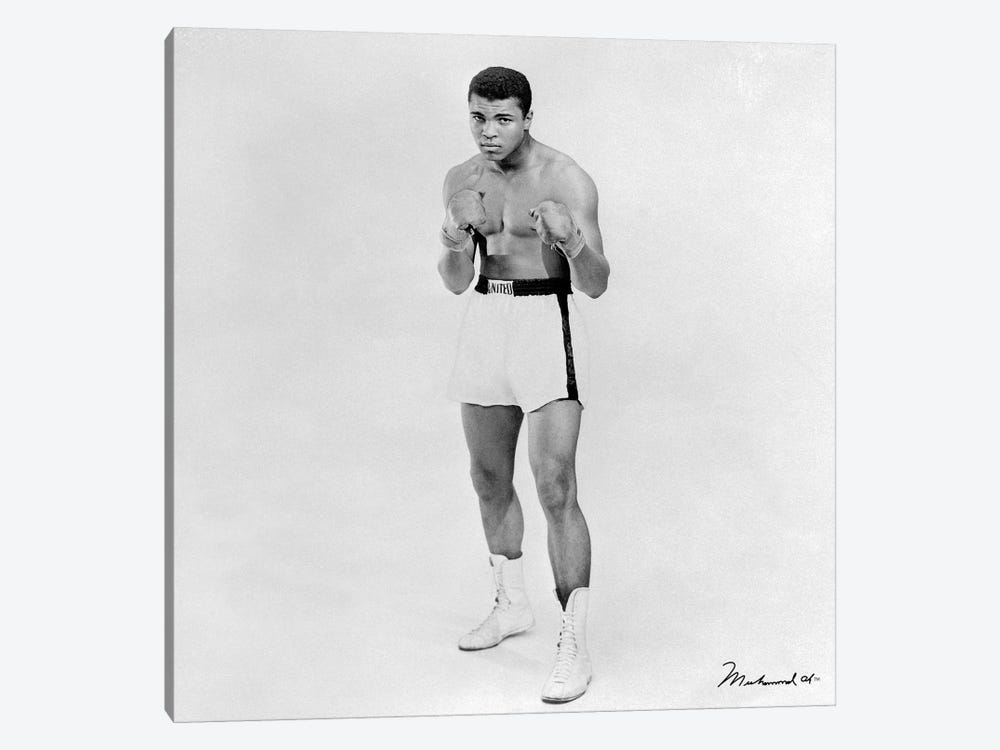 Heavyweight Boxer Muhammad Ali by Muhammad Ali Enterprises 1-piece Canvas Artwork