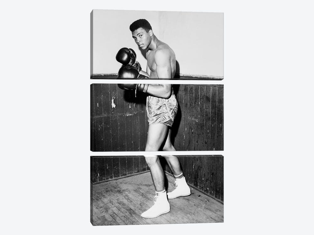 Winner of Golden Gloves Heavyweight Title, 1960 3-piece Art Print