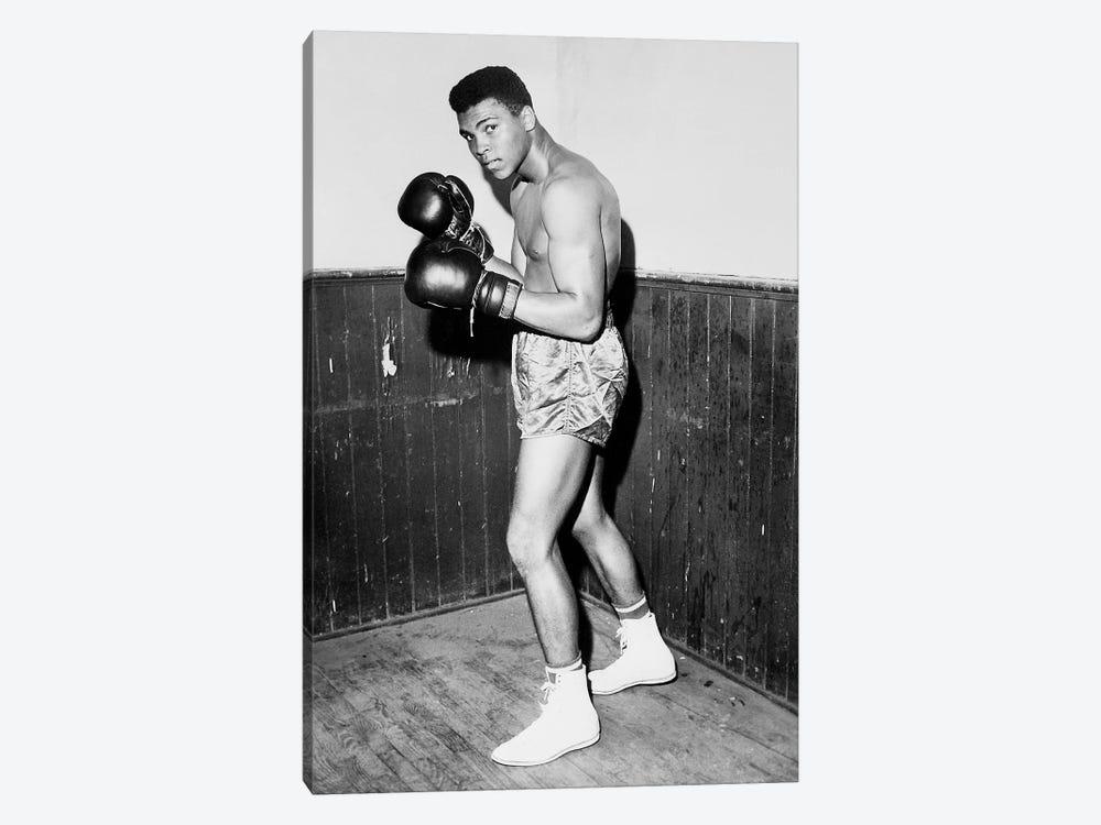 Winner of Golden Gloves Heavyweight Title, 1960 by Muhammad Ali Enterprises 1-piece Art Print