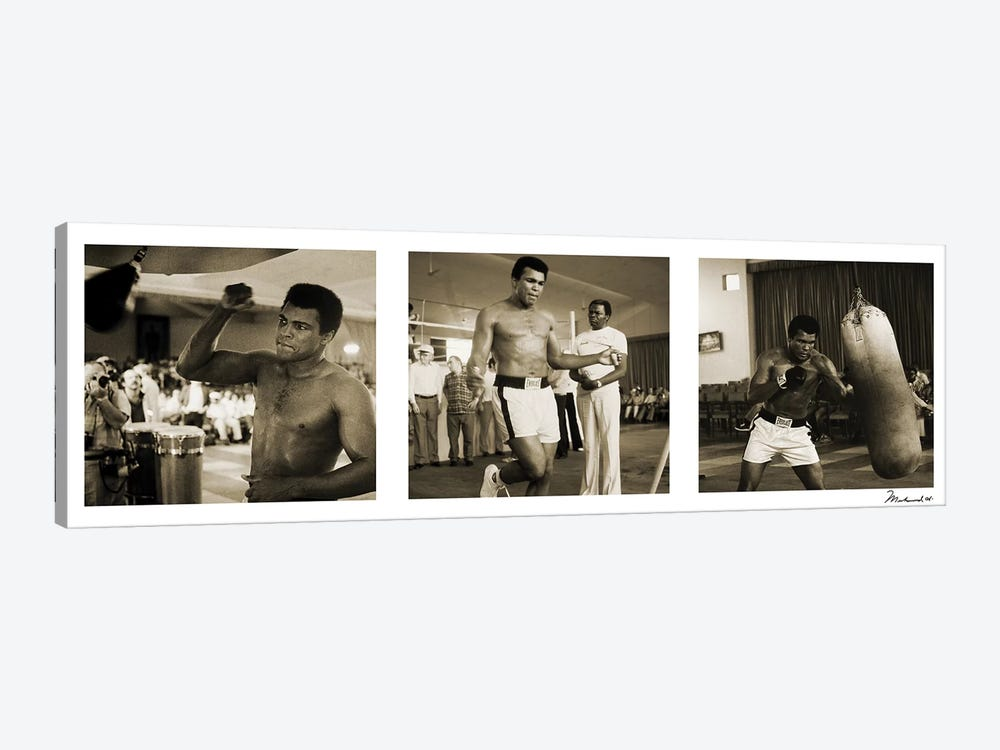 Training in Action at the gym by Muhammad Ali Enterprises 1-piece Canvas Print