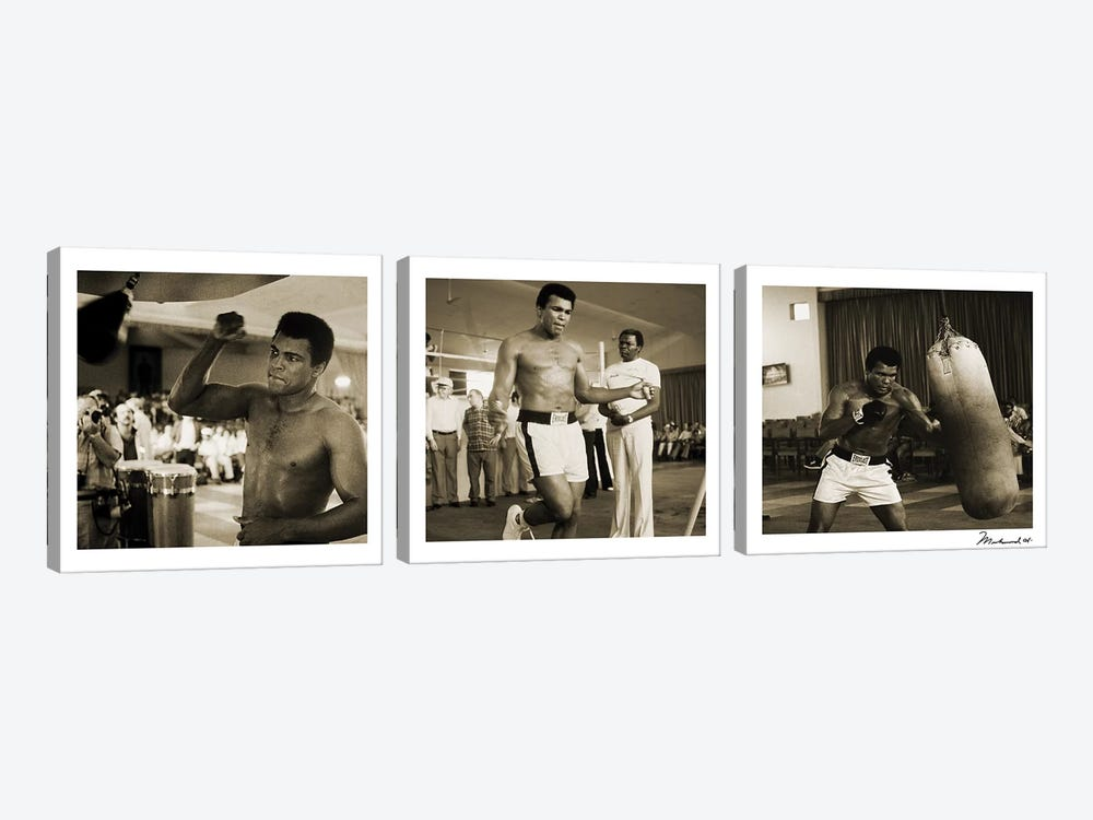 Training in Action at the gym by Muhammad Ali Enterprises 3-piece Canvas Print