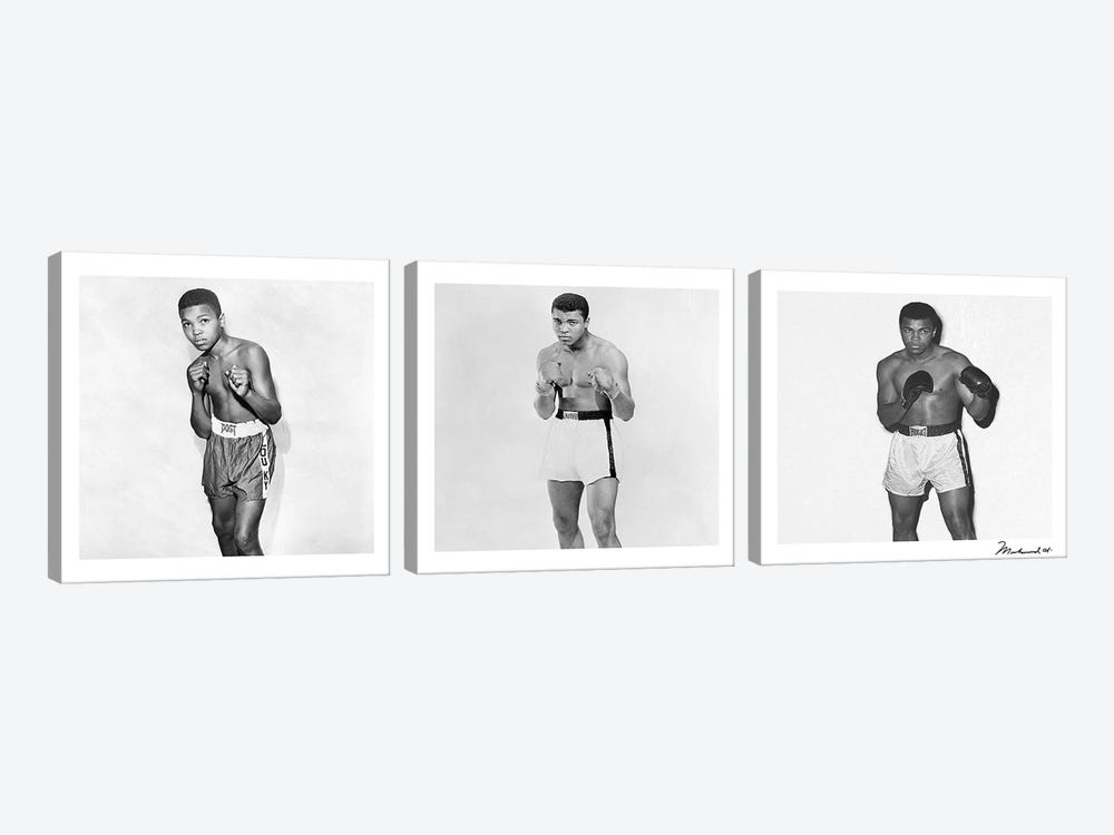 Publicity shots of Ali by Muhammad Ali Enterprises 3-piece Canvas Artwork