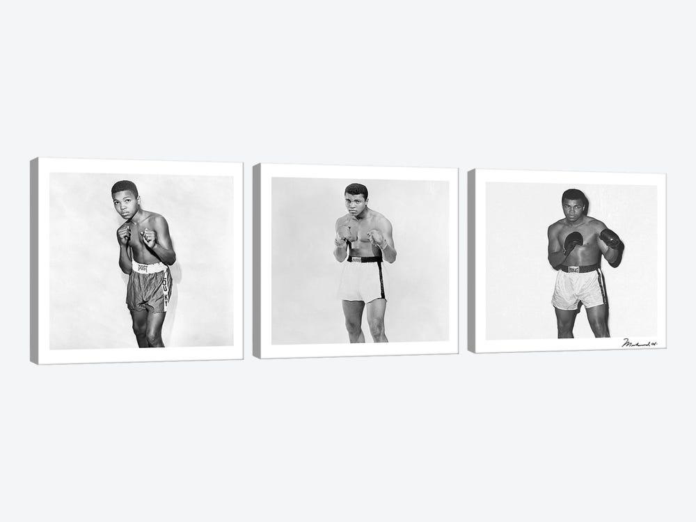 Publicity shots of Ali by Muhammad Ali Enterprises 3-piece Canvas Artwork