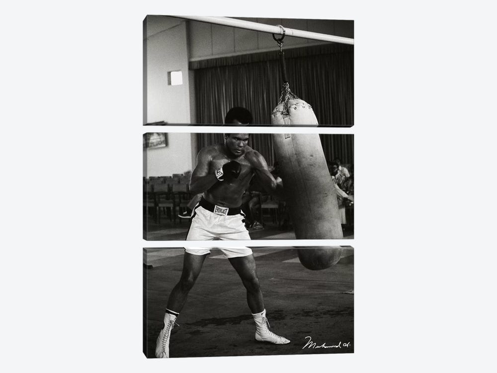 Ali Training in Zaire by Muhammad Ali Enterprises 3-piece Canvas Print