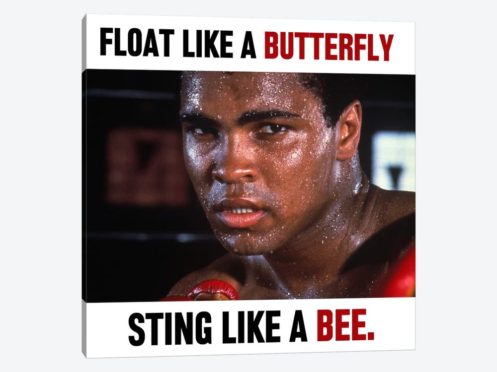 Float like a butterfly Sting like a Bee by Muhammad Ali Enterprises 1-piece Canvas Artwork