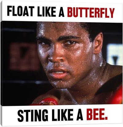 Float like a butterfly Sting like a Bee Canvas Art Print