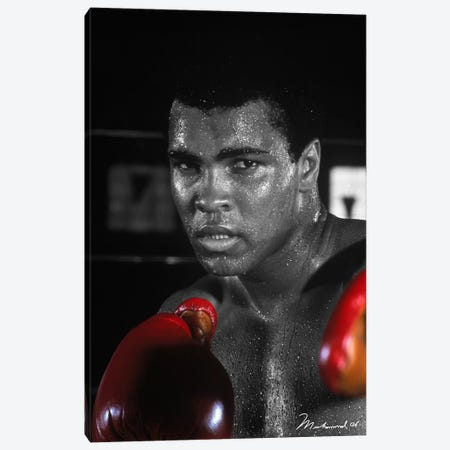 Muhammad Ali in training Canvas Print #10020} Canvas Art