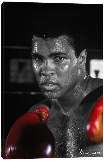 Muhammad Ali in training Canvas Art Print