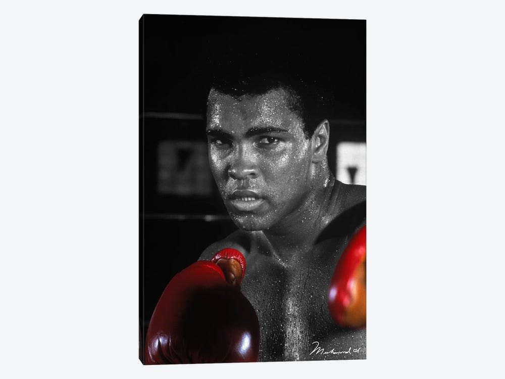Muhammad Ali in training by Muhammad Ali Enterprises 1-piece Canvas Art
