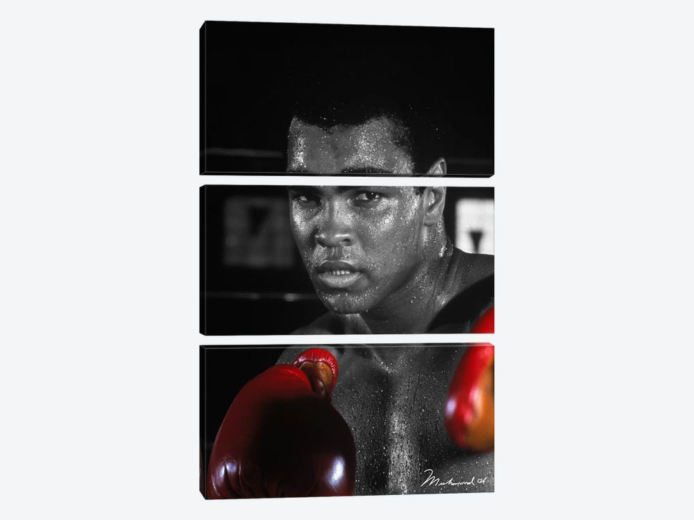 Muhammad Ali in training by Muhammad Ali Enterprises 3-piece Canvas Wall Art