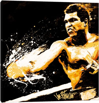 Ali Fury Canvas Art Print