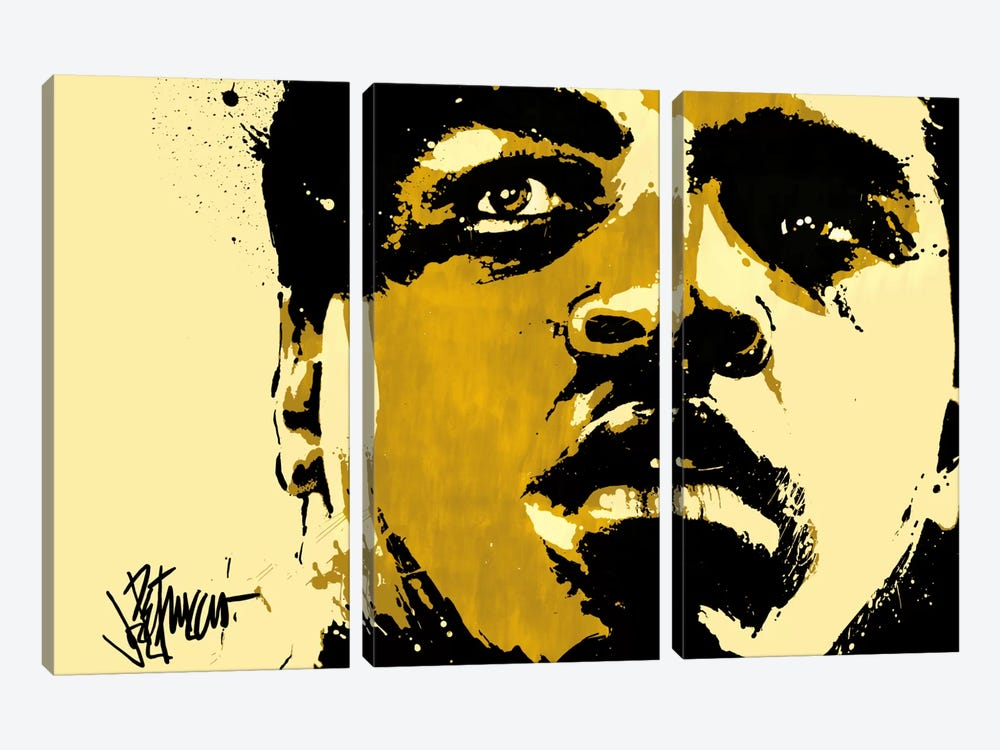 Eyes of The World by Muhammad Ali Enterprises 3-piece Canvas Wall Art