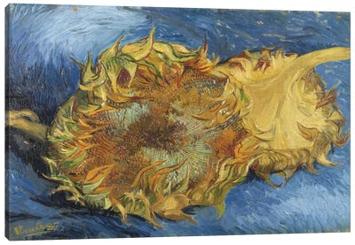 Sunflowers, 1887 by Vincent van Gogh Canvas Art