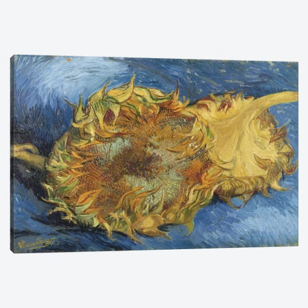 Sunflowers, 1887 Canvas Print #1015} by Vincent van Gogh Canvas Art