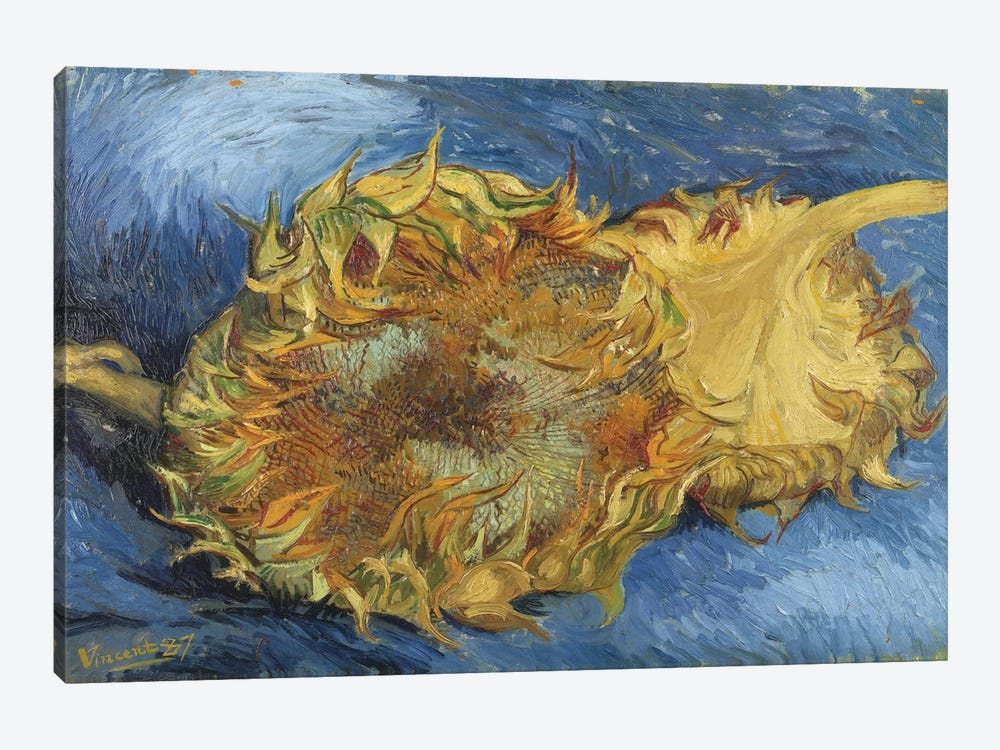 Sunflowers, 1887 by Vincent van Gogh 1-piece Canvas Wall Art