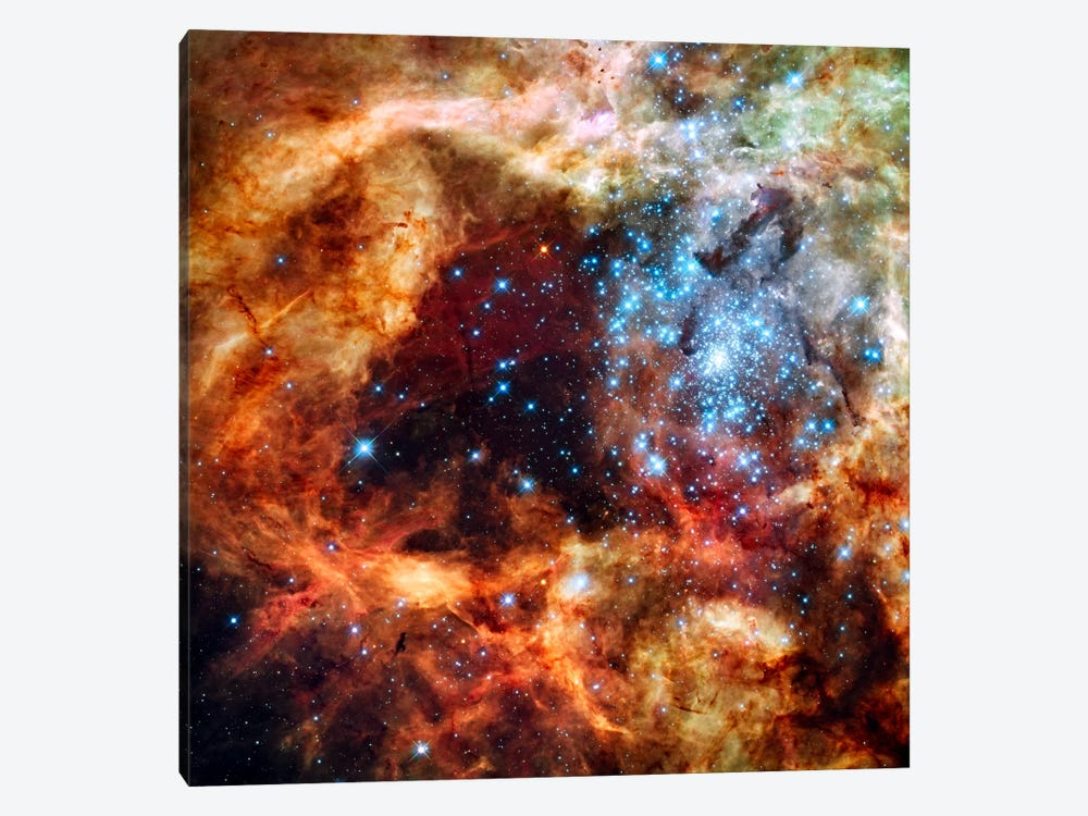 R136 Star Cluster (Hubble Space Telescope) by NASA 1-piece Canvas Wall Art