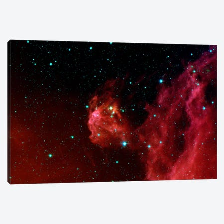 Stars Hatching from Orion's Head (Spitzer Space Station) Canvas Print #11032} by NASA Canvas Artwork