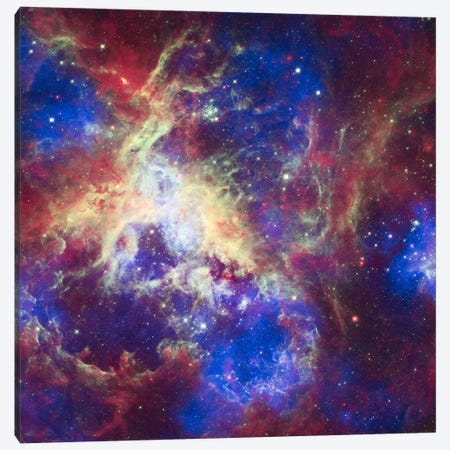 Tarantula Nebula (Spitzer Space Observatory) Canvas Print #11068} by NASA Art Print