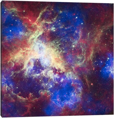 Tarantula Nebula (Spitzer Space Observatory) Canvas Print #11068
