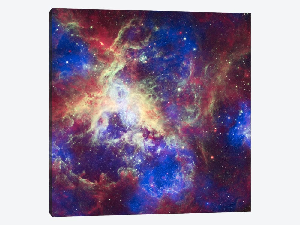 Tarantula Nebula (Spitzer Space Observatory) by NASA 1-piece Canvas Art