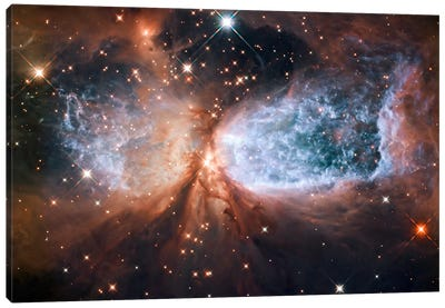 Celestial Snow Angel S106 Nebula (Hubble Space Telescope) Canvas Art Print