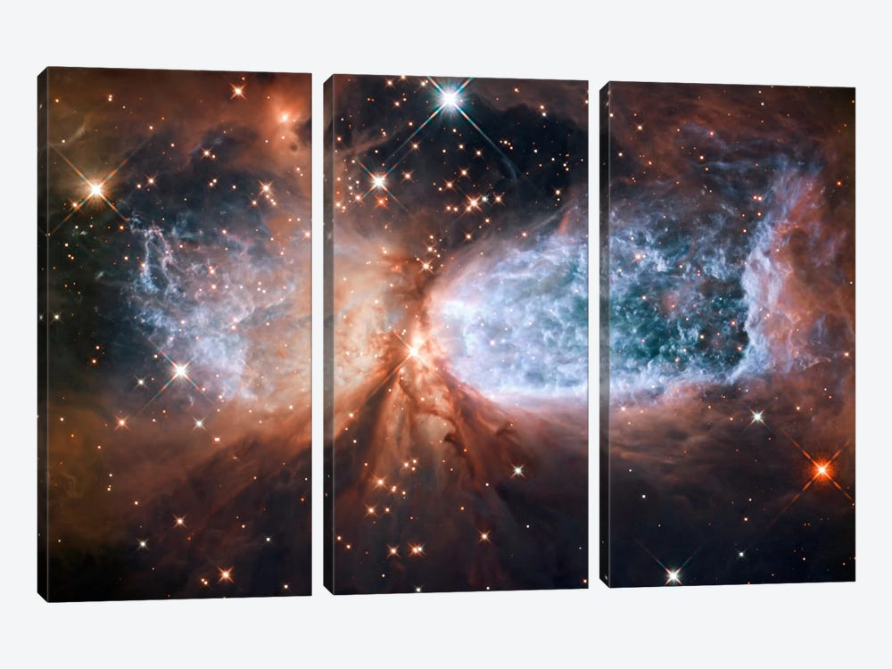 Celestial Snow Angel S106 Nebula (Hubble Space Telescope) by NASA 3-piece Canvas Artwork