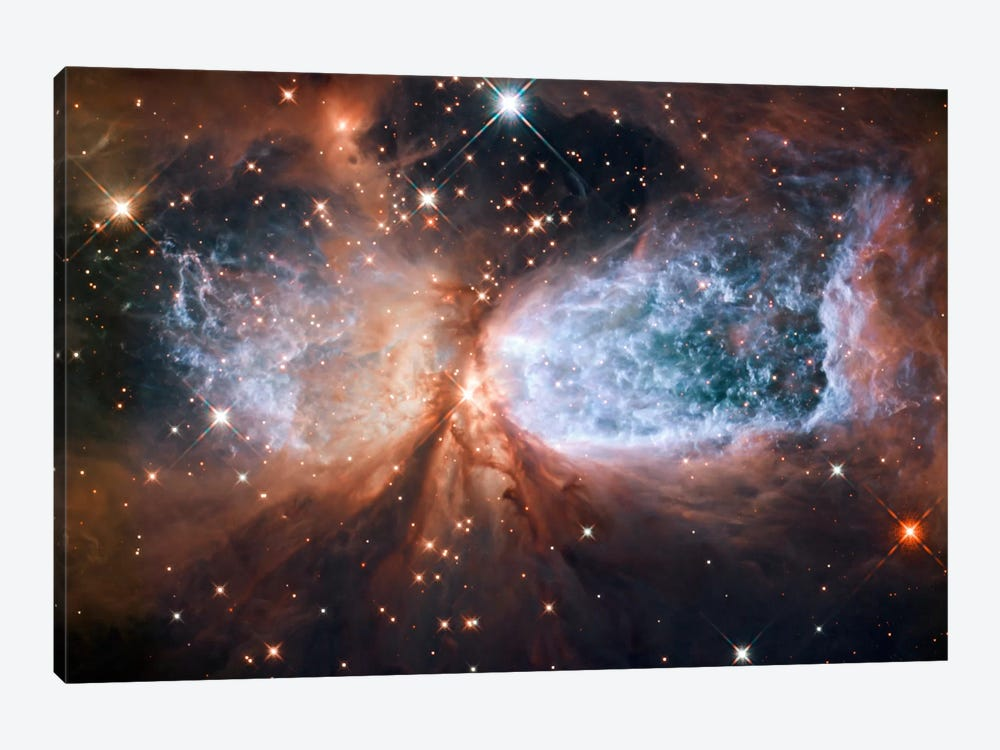 Celestial Snow Angel S106 Nebula (Hubble Space Telescope) by NASA 1-piece Canvas Wall Art