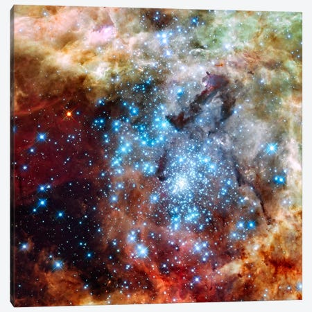 Star Cluster on Collision Course (Hubble Space Telescope) Canvas Print #11104} by NASA Canvas Print