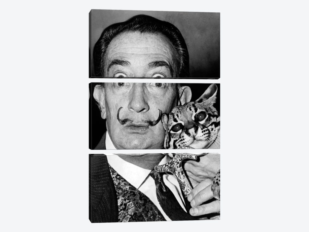 Portrait of Salvador Dali by Roger Higgins 3-piece Canvas Art