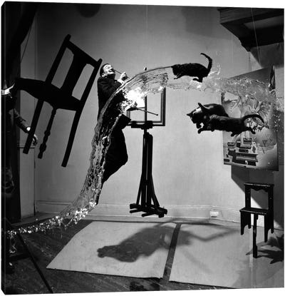 Dali Atomicus, photo Canvas Art Print