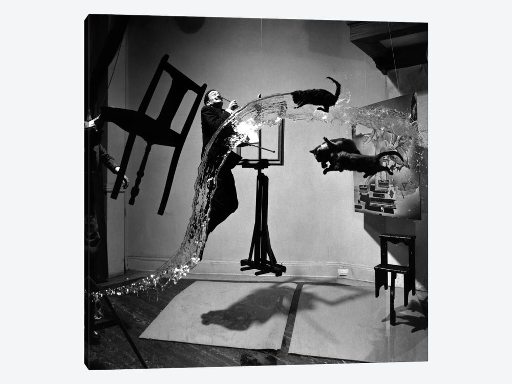 Dali Atomicus, photo by Philippe Halsman 1-piece Canvas Art Print