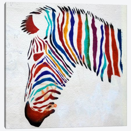 Zebra Graffiti Canvas Print #11323} by Unknown Artist Canvas Artwork