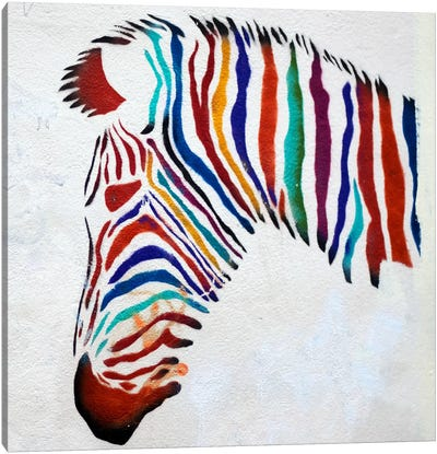 Zebra Graffiti Canvas Art Print