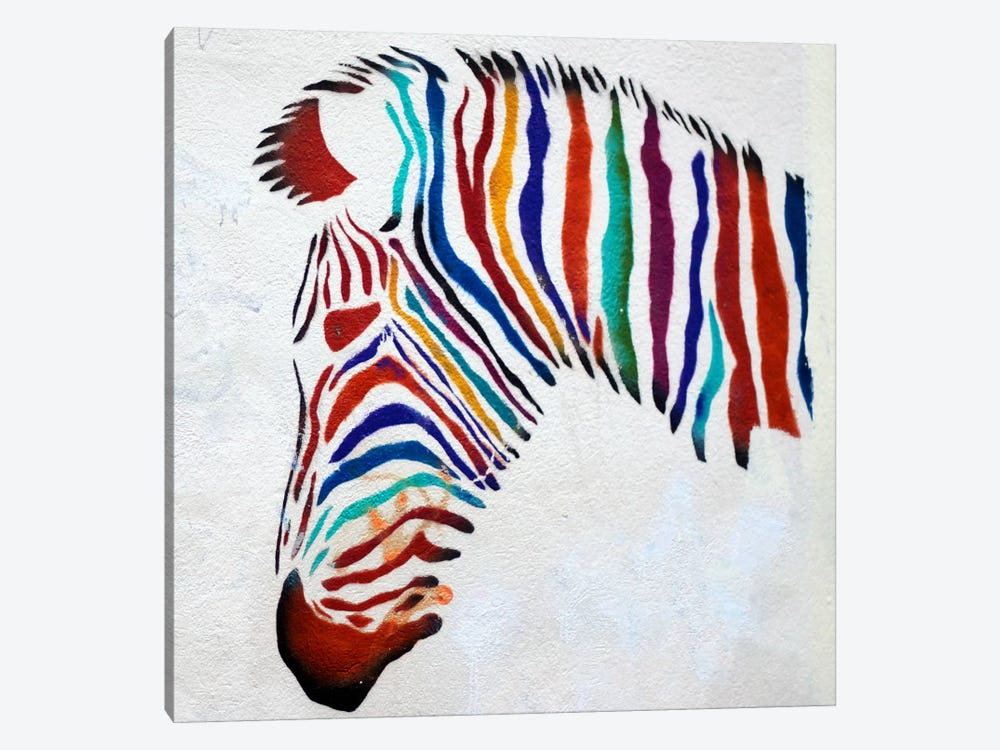 Zebra Graffiti by Unknown Artist 1-piece Art Print