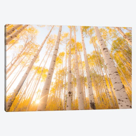 Colorado Canvas Print #11500} by Dan Ballard Canvas Artwork