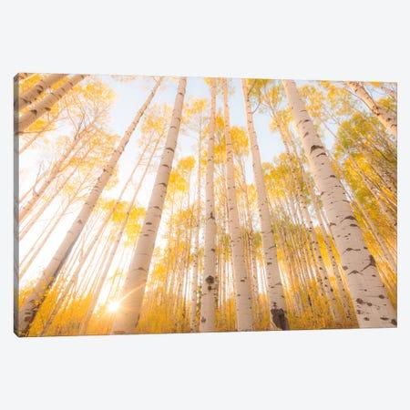 Colorado Canvas Print #11500} by Dan Ballard Canvas Artwork