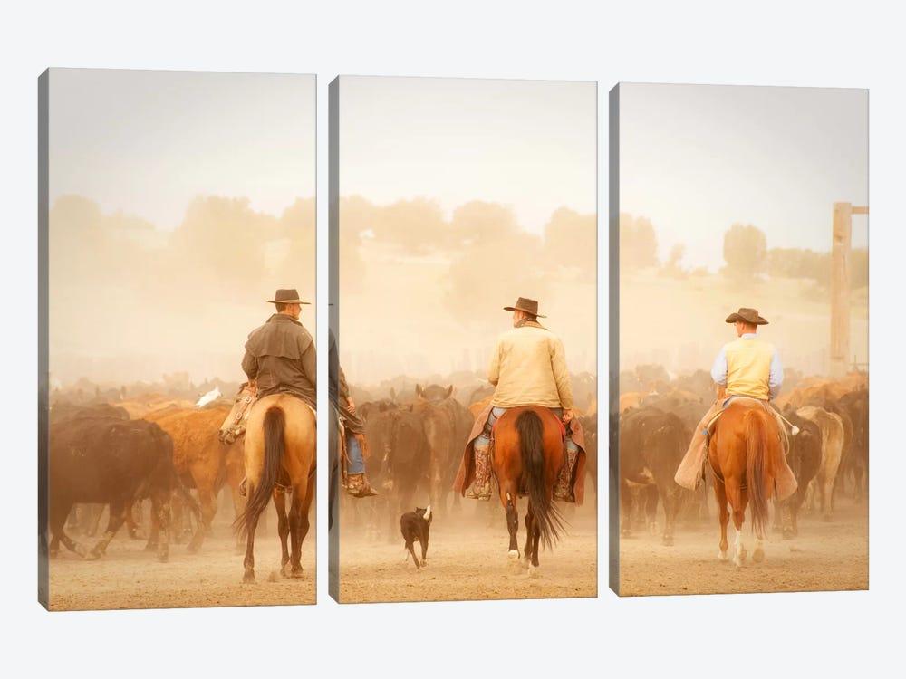 Cowboys Best Friend by Dan Ballard 3-piece Canvas Wall Art
