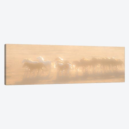 Free Run Canvas Print #11508} by Dan Ballard Canvas Artwork