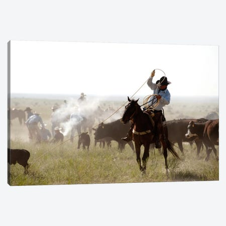 Heeler Canvas Print #11509} by Dan Ballard Canvas Artwork