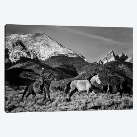 Roping in the San Greys Canvas Print #11522} by Dan Ballard Canvas Art