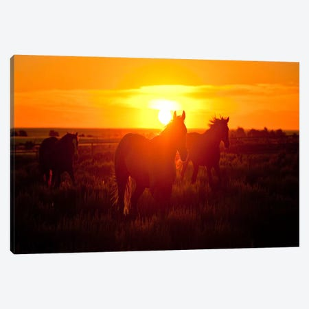 Run Canvas Print #11523} by Dan Ballard Canvas Artwork