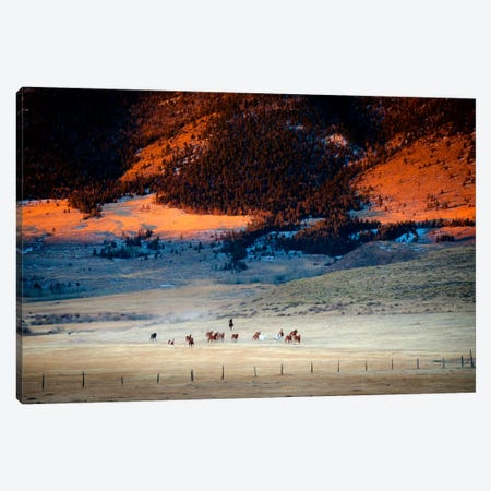 Rusher Ranch Canvas Print #11525} by Dan Ballard Canvas Art Print