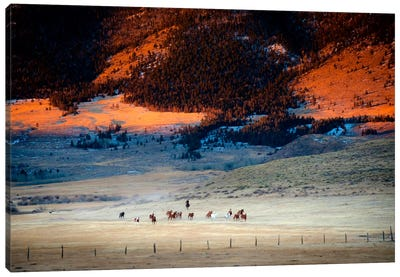 Rusher Ranch Canvas Print #11525