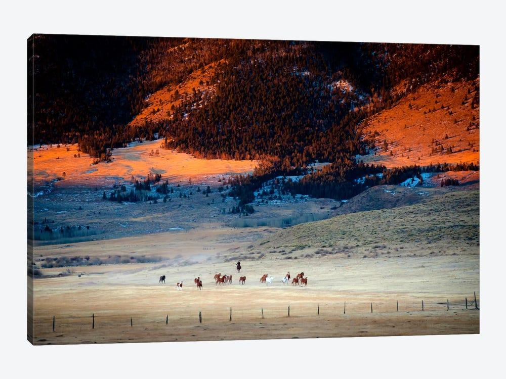Rusher Ranch by Dan Ballard 1-piece Canvas Art Print
