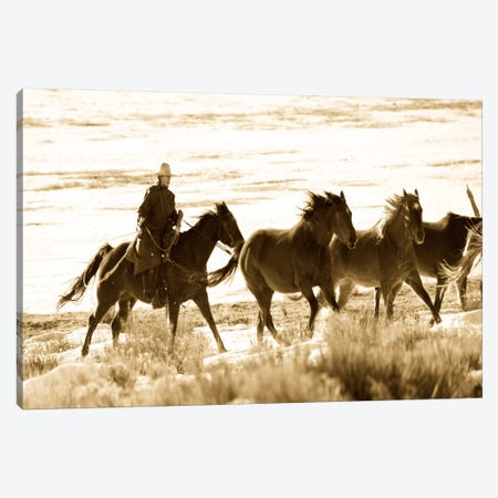 Still Wild Canvas Print #11530} by Dan Ballard Canvas Print