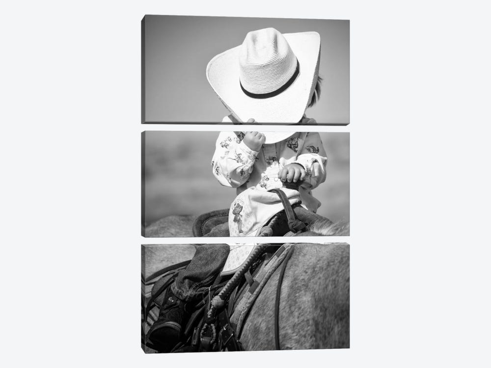True Cowgirl by Dan Ballard 3-piece Art Print