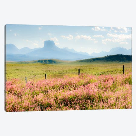 Alone the Way Canvas Print #11542} by Dan Ballard Canvas Art