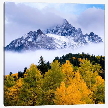 Breaking Out #2 Canvas Print #11544B} by Dan Ballard Canvas Art