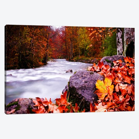 Autumn Flow Canvas Print #11545} by Dan Ballard Canvas Print