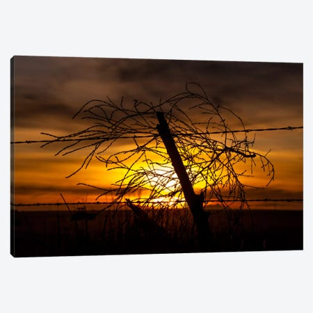 Blowing in the Wind Canvas Print #11548} by Dan Ballard Canvas Art